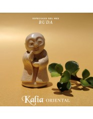 Mini Buda